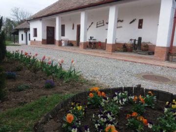 Tulipán Vendégház Tiszabábolna - Szallas.hu